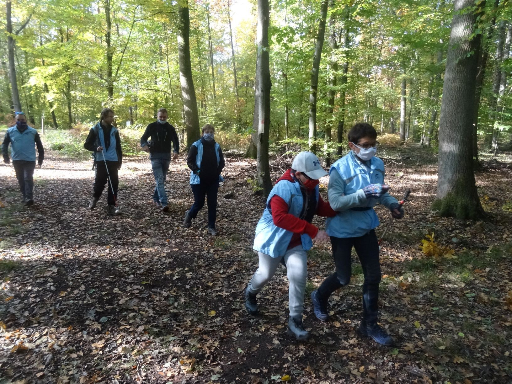 Groupe foret